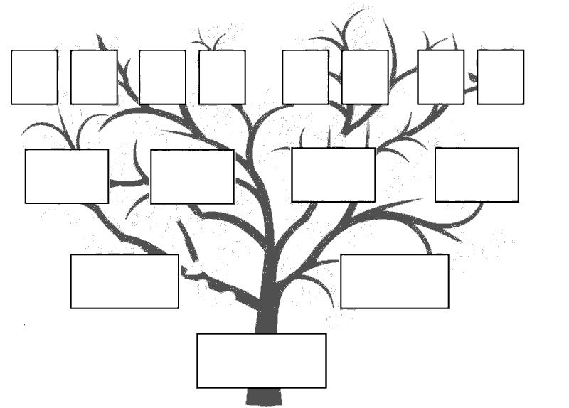 Раскраска « Генеалогическое дерево». №23916