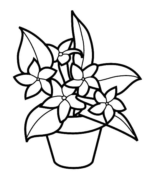 Раскраска «Цветы в горшке». №23793