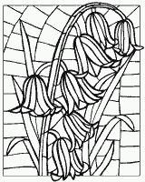 Раскраска №30195