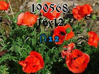 Пазл перевертыш №190568