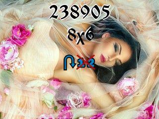 Пазл перевертыш №238905