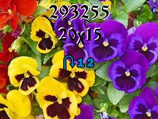 Пазл перевертыш №293255