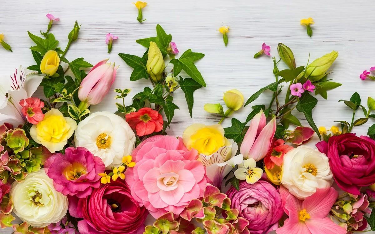 Пазл Собирать пазлы онлайн - Бордюр из цветов
