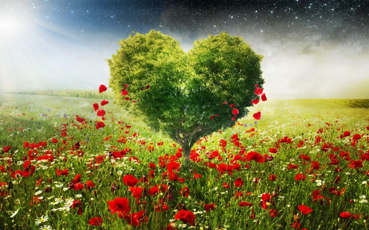 Пазл Собирать пазлы онлайн - Дерево-сердце