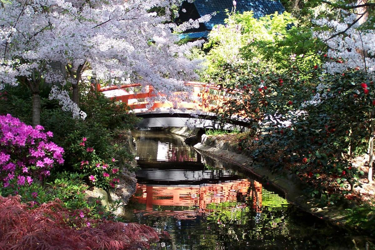 Пазл Собирать пазлы онлайн - Descanso Gardens