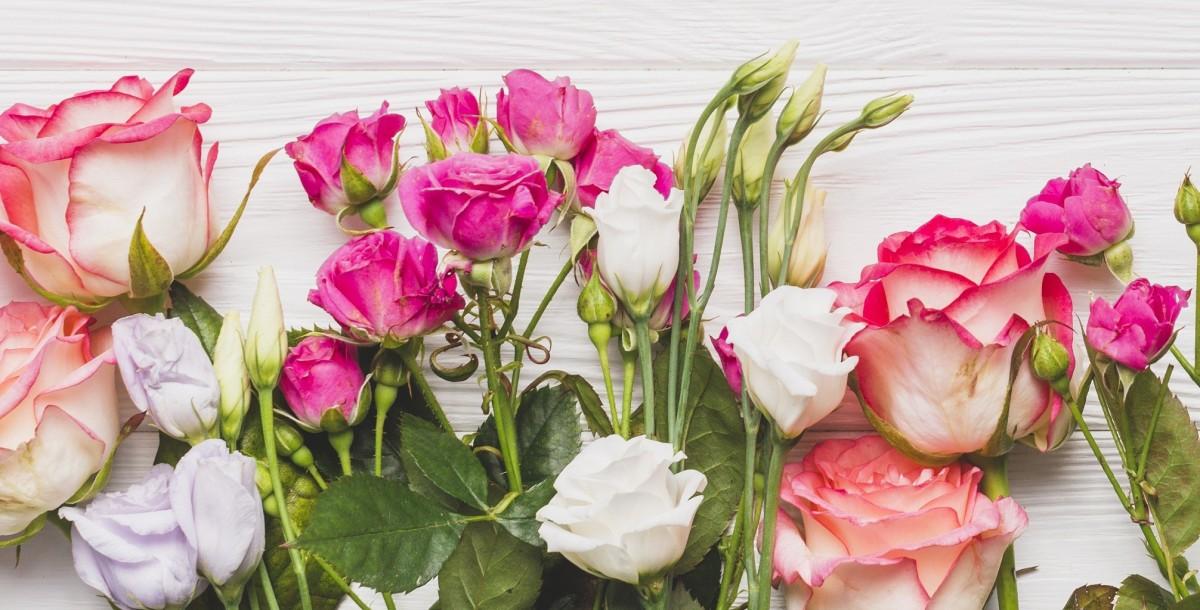Пазл Собирать пазлы онлайн - Эустома и роза