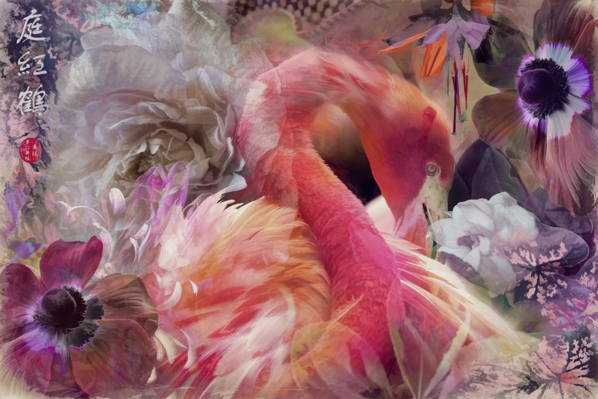 Пазл Собирать пазлы онлайн - Фламинго в цветах