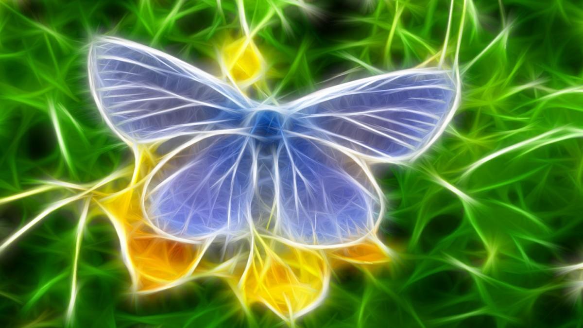 Пазл Собирать пазлы онлайн - Голубой мотылек