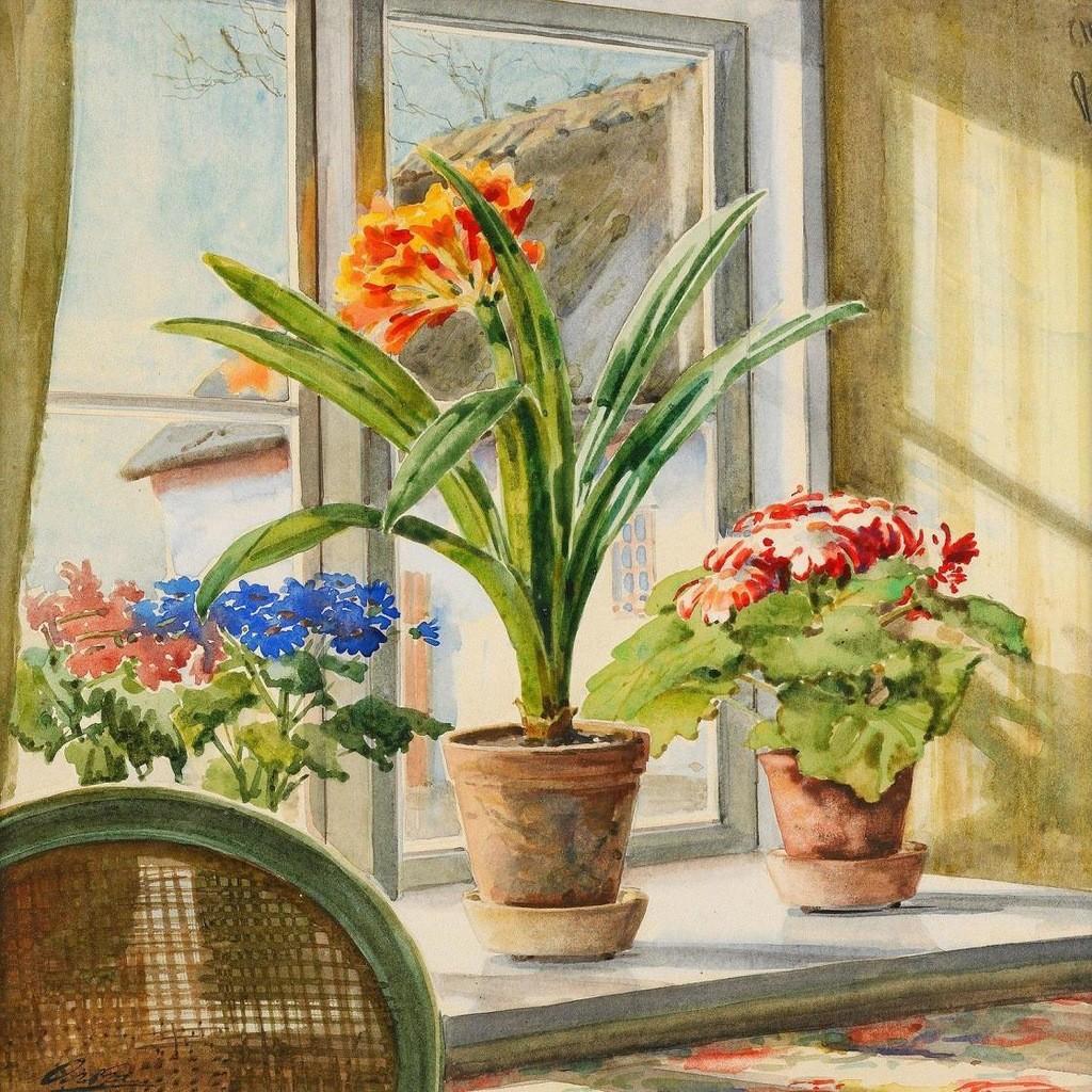 Пазл Собирать пазлы онлайн - Комнатные цветы