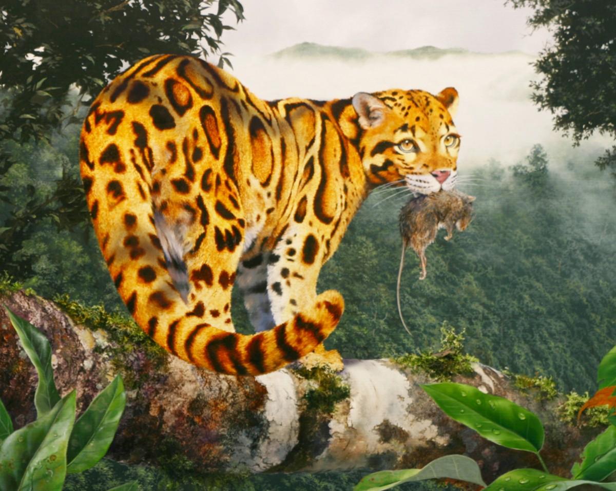 Пазл Собирать пазлы онлайн - Леопард с добычей