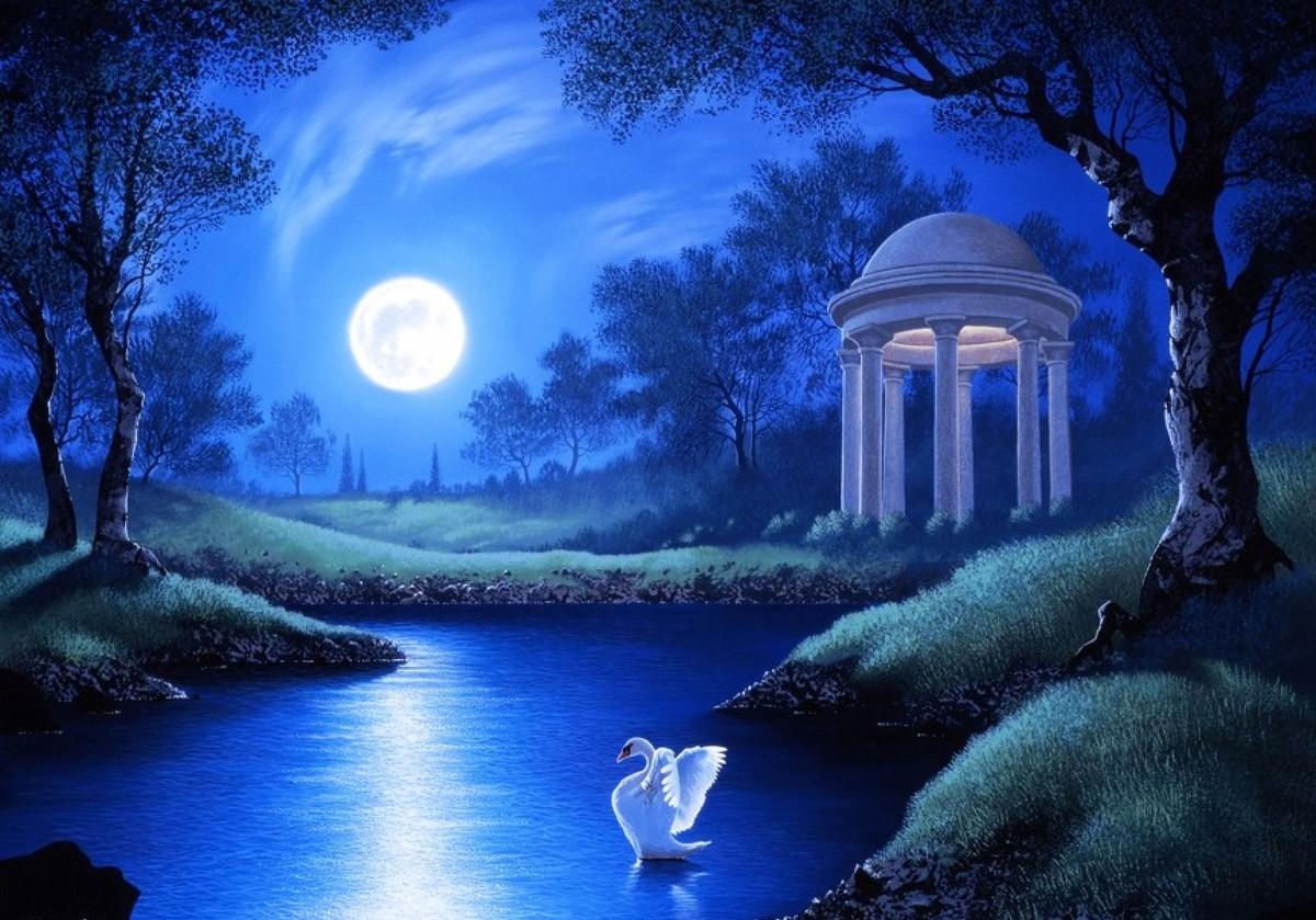 Пазл Собирать пазлы онлайн - Лунная ночь