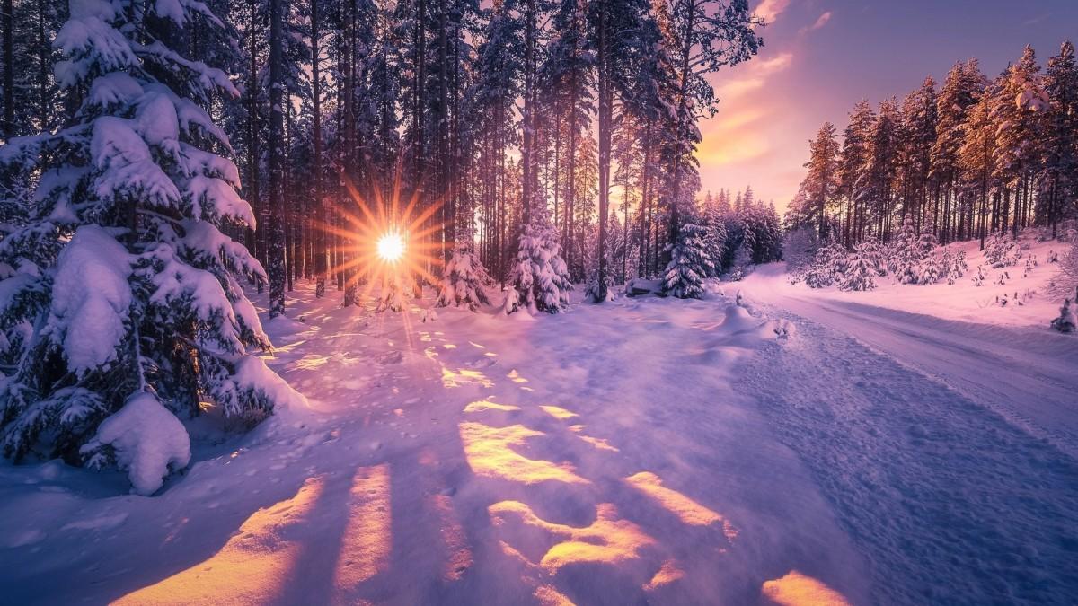 Пазл Собирать пазлы онлайн - Мороз и солнце