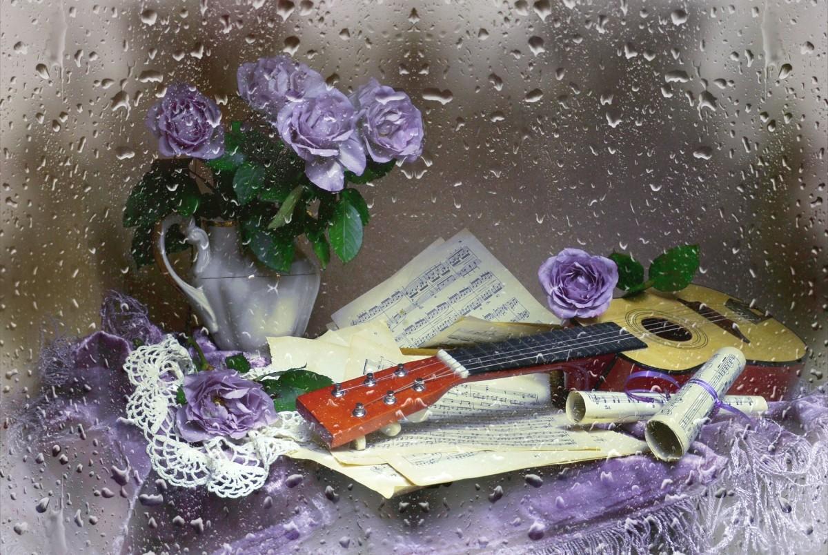 Пазл Собирать пазлы онлайн - Музыка дождя