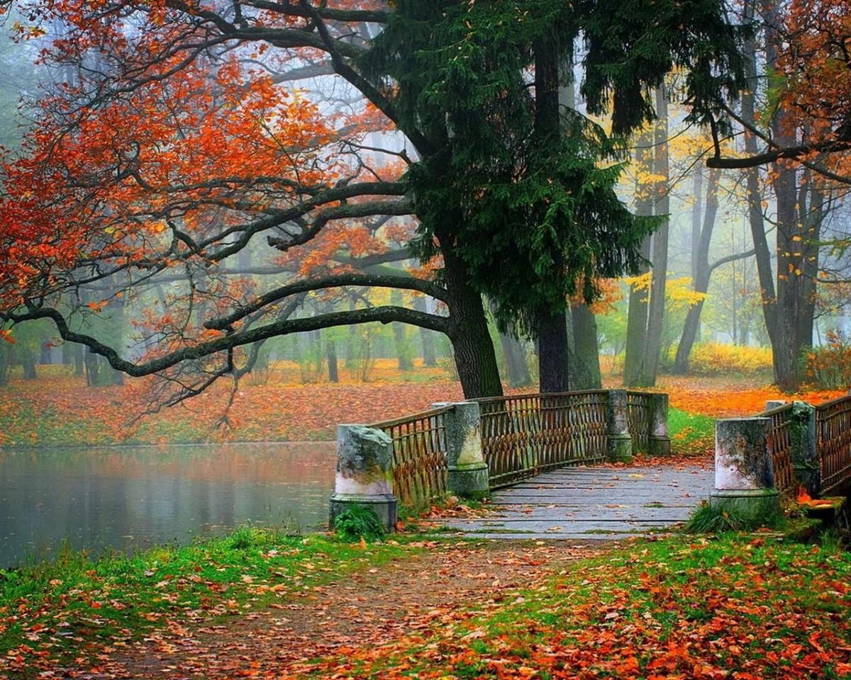 Пазл Собирать пазлы онлайн - Осень в парке