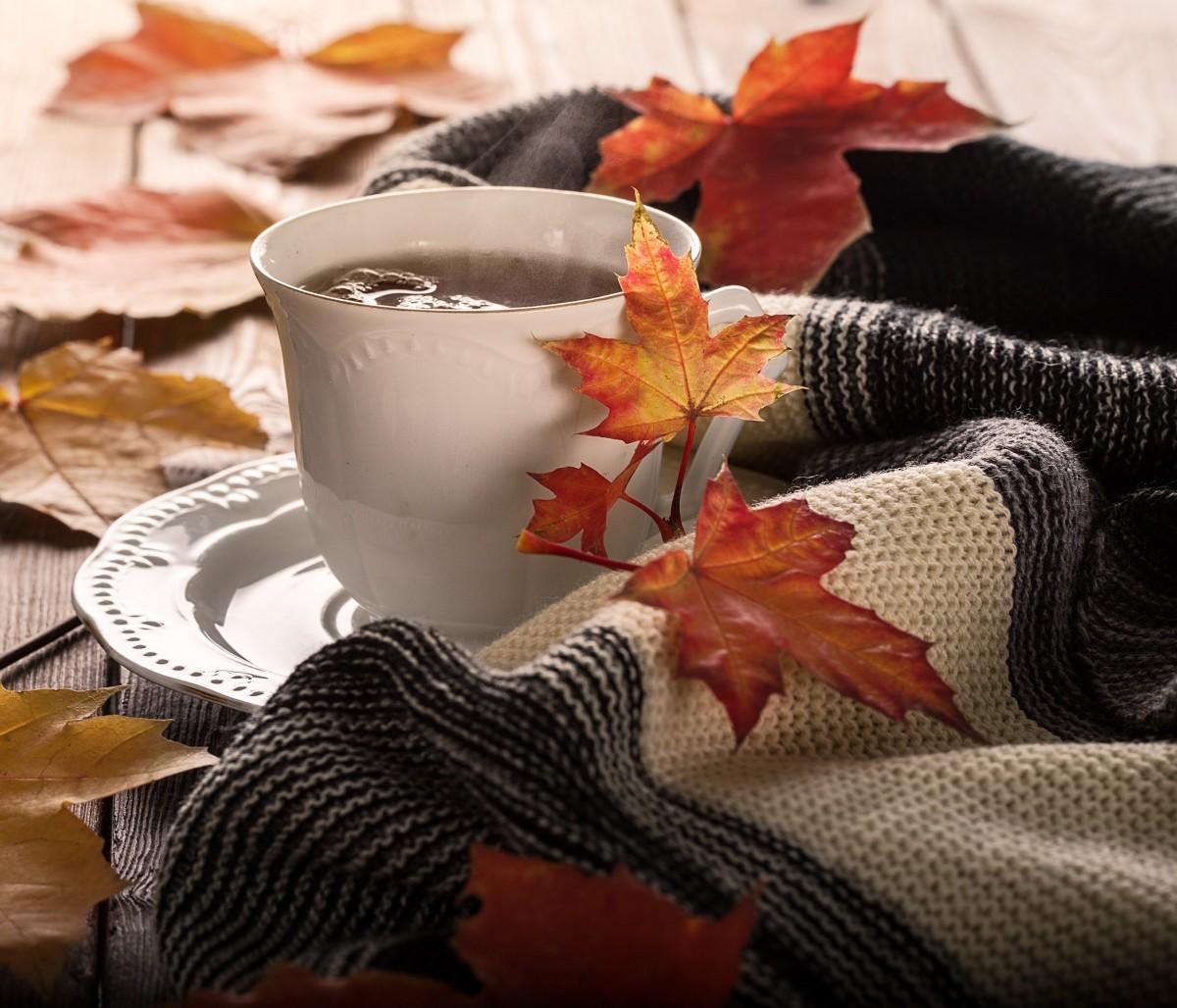 Пазл Собирать пазлы онлайн - Осенний напиток