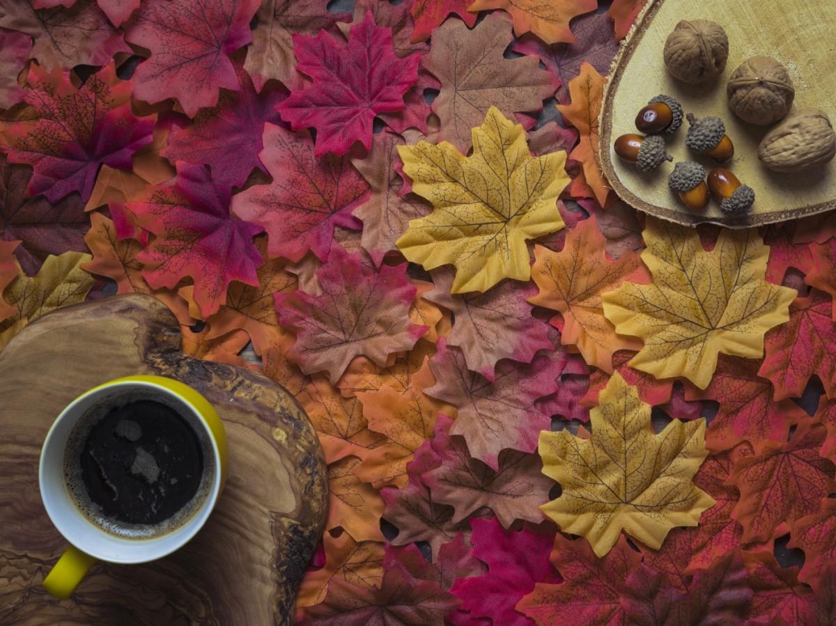 Пазл Собирать пазлы онлайн - Осенний натюрморт