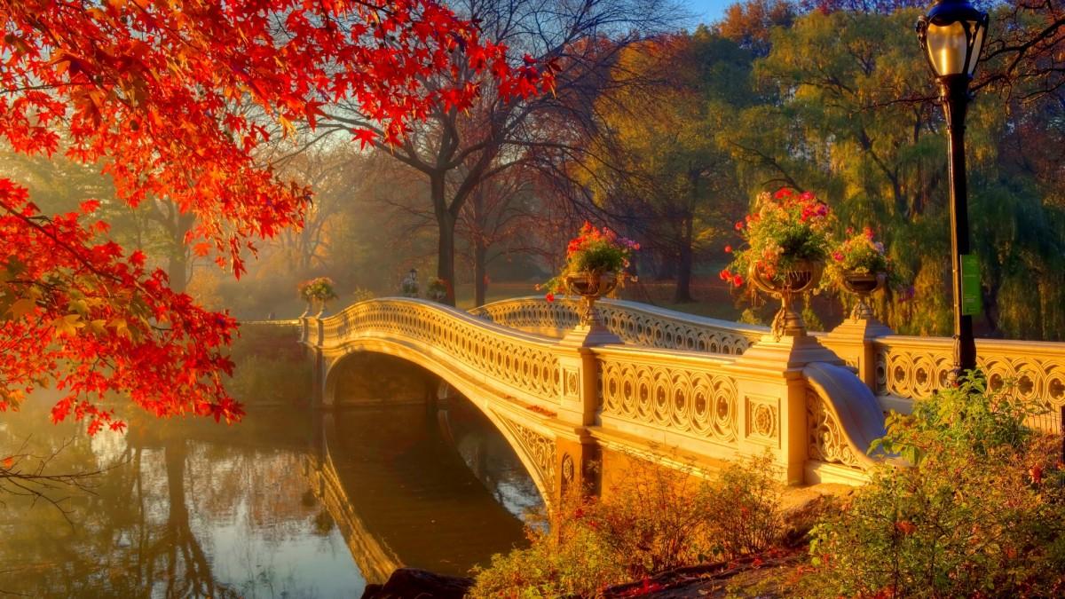 Пазл Собирать пазлы онлайн - Осенняя дымка