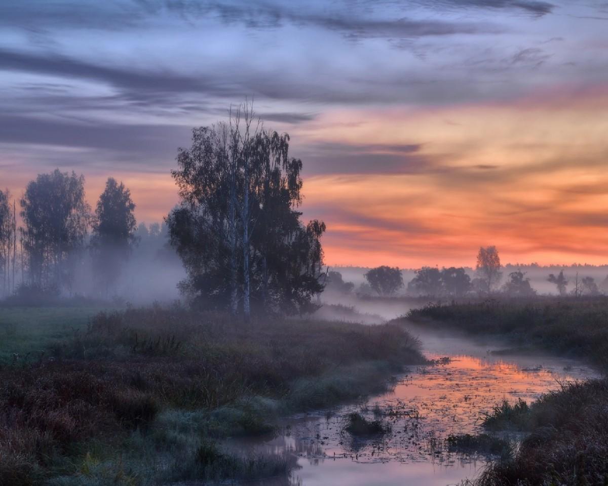 Пазл Собирать пазлы онлайн - Осенняя зорька