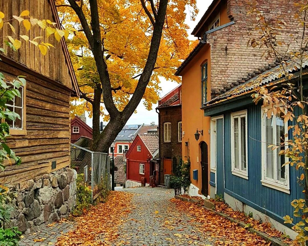 Пазл Осло Норвегия