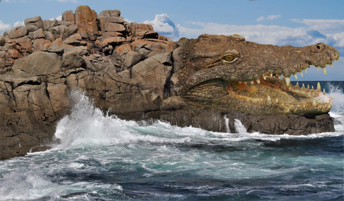 Пазл Собирать пазлы онлайн - Остров Крокорок