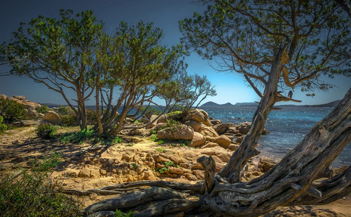 Пазл Собирать пазлы онлайн - Остров Сардиния