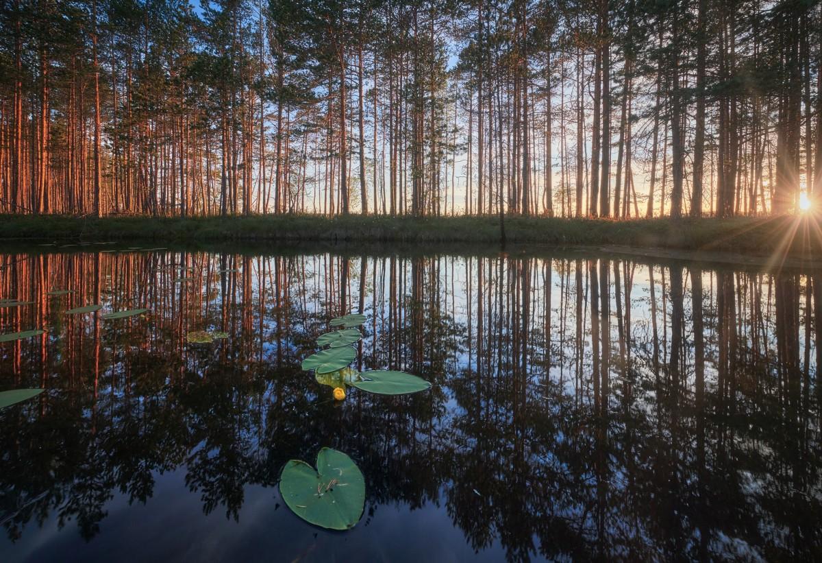 Пазл Собирать пазлы онлайн - Отражение в озере