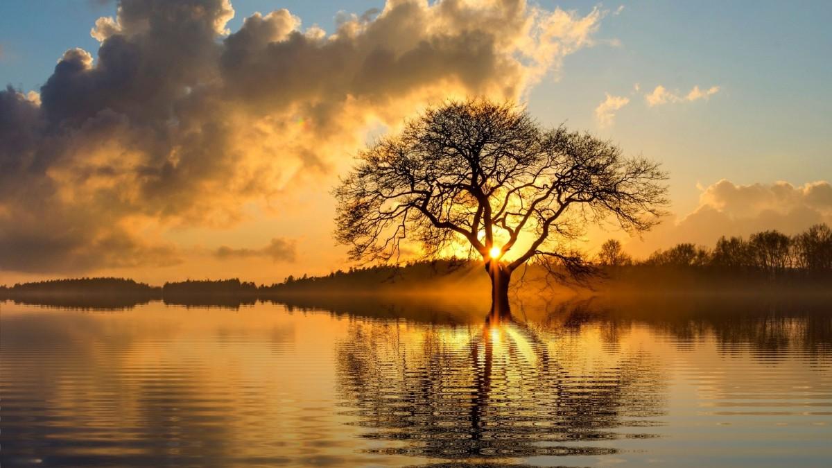Пазл Собирать пазлы онлайн - Озеро в закате