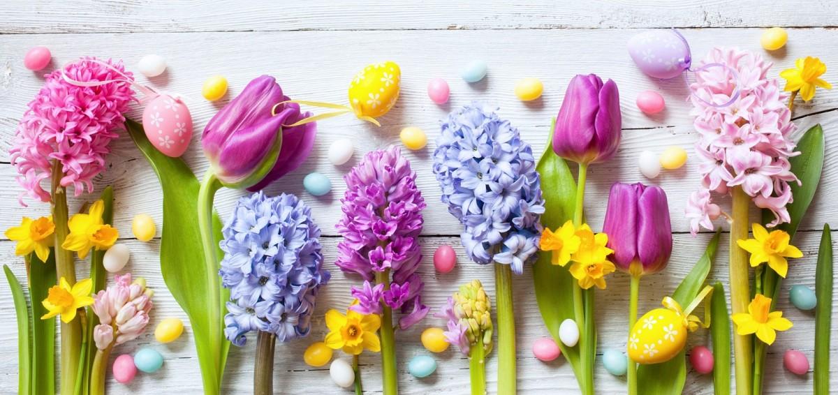 Пазл Собирать пазлы онлайн - Пасхальные цветы