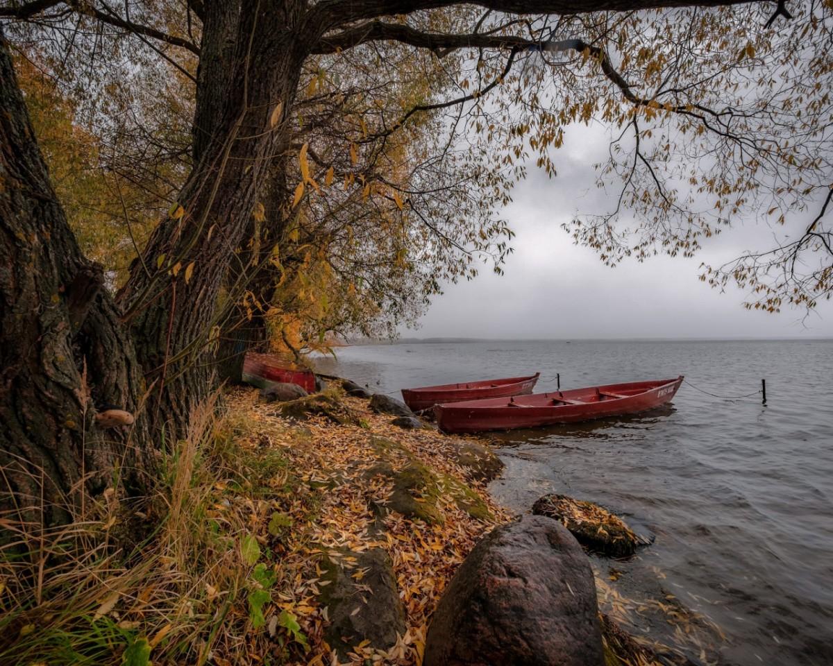 Пазл Собирать пазлы онлайн - Озеро в Плещеево