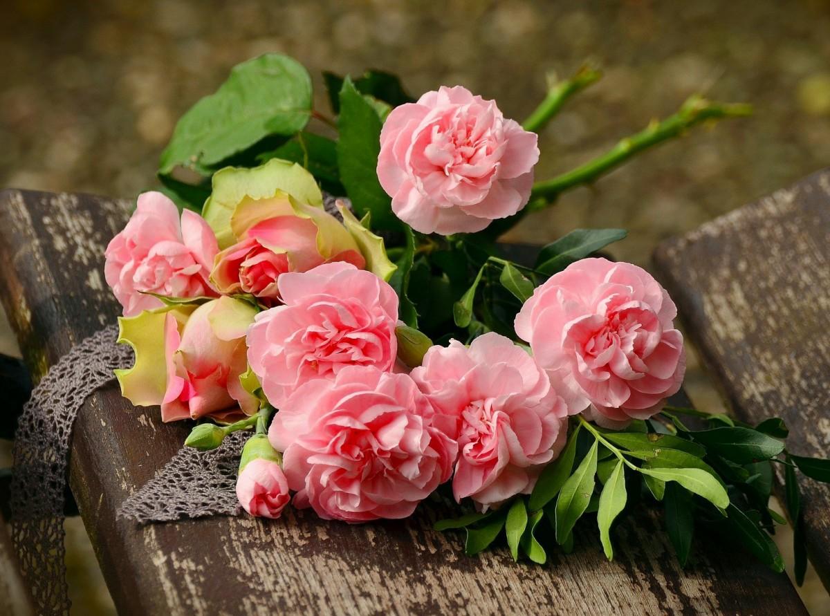 Пазл Собирать пазлы онлайн - Пионы и розы