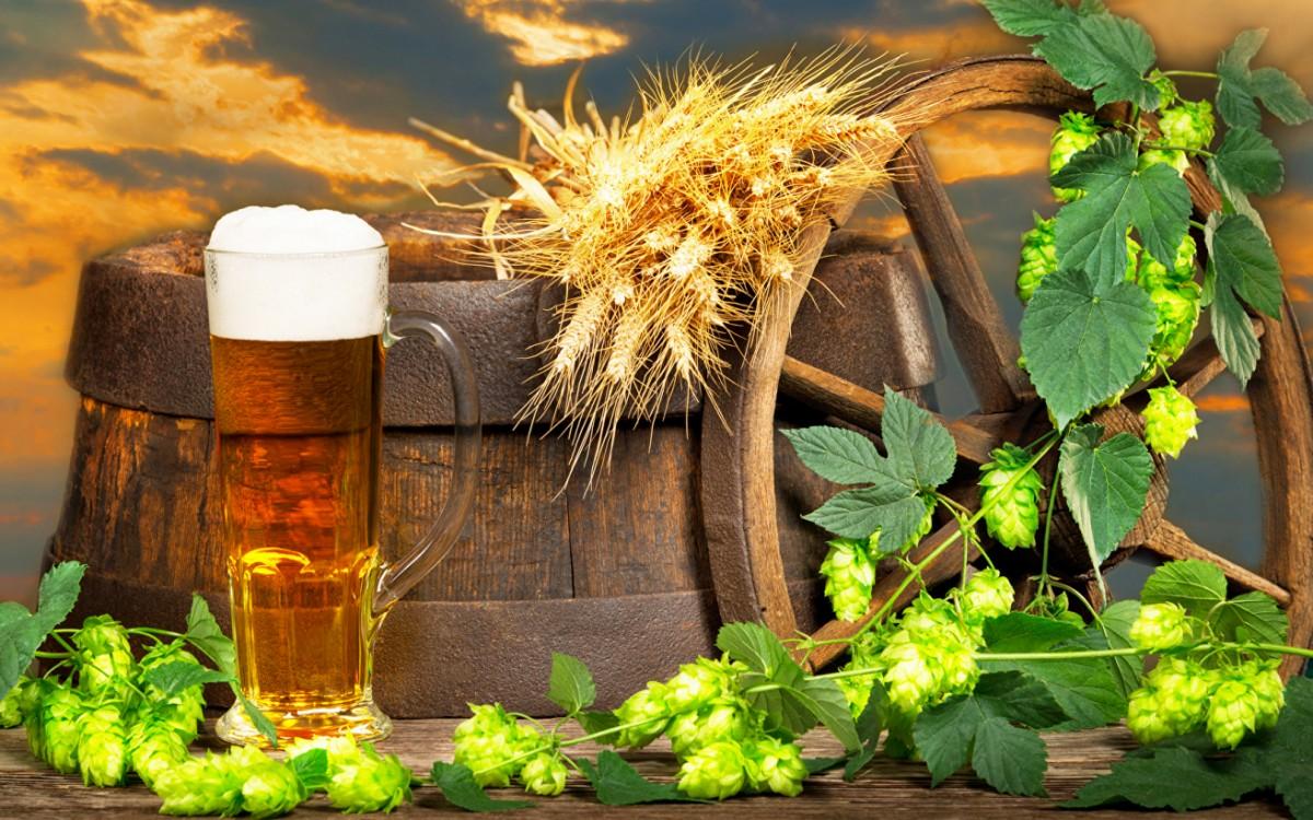 Пазл Собирать пазлы онлайн - Пиво и хмель