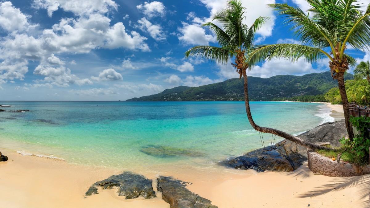 Пазл Собирать пазлы онлайн - Пляж и пальмы