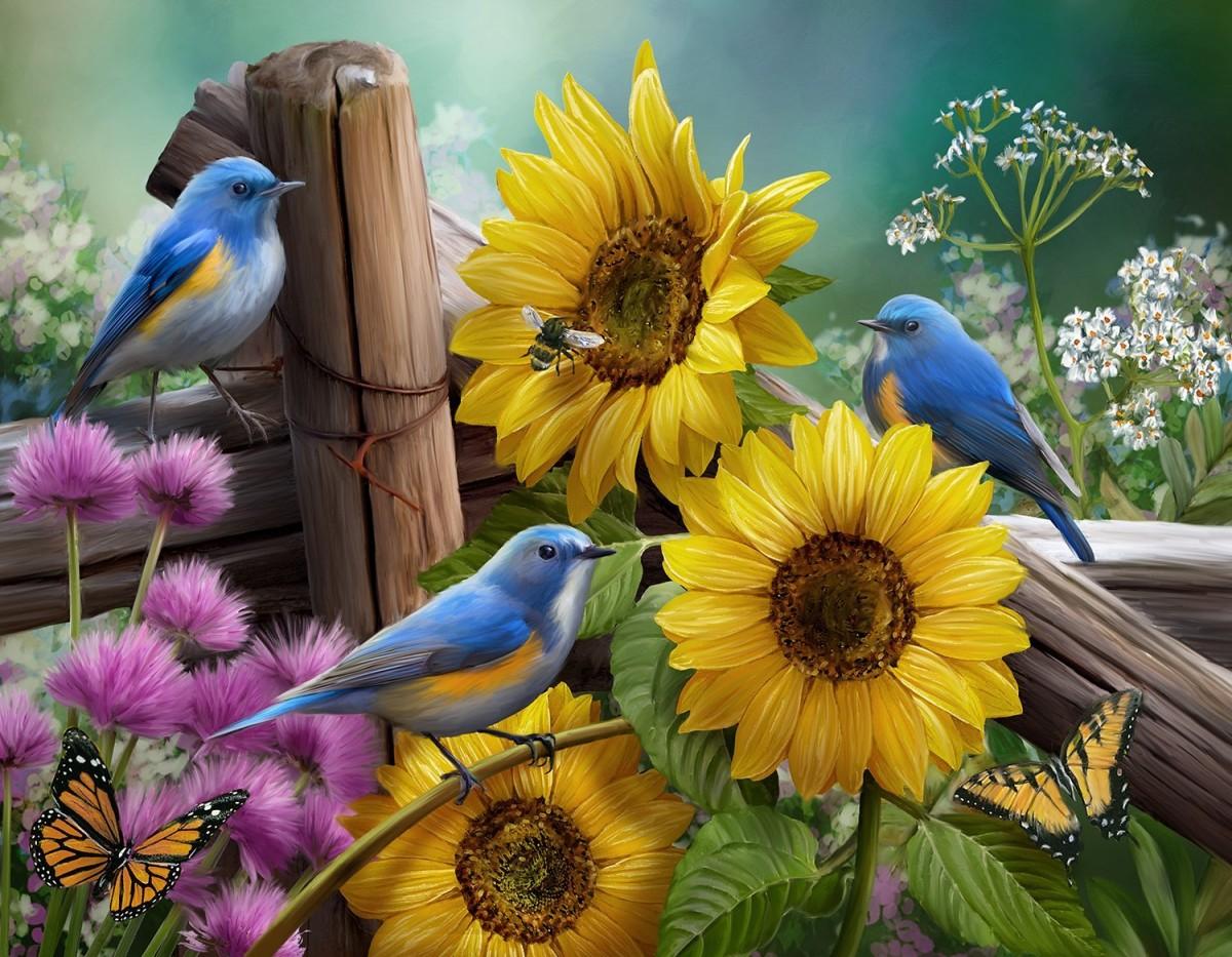 Пазл Собирать пазлы онлайн - Подсолнухи в саду