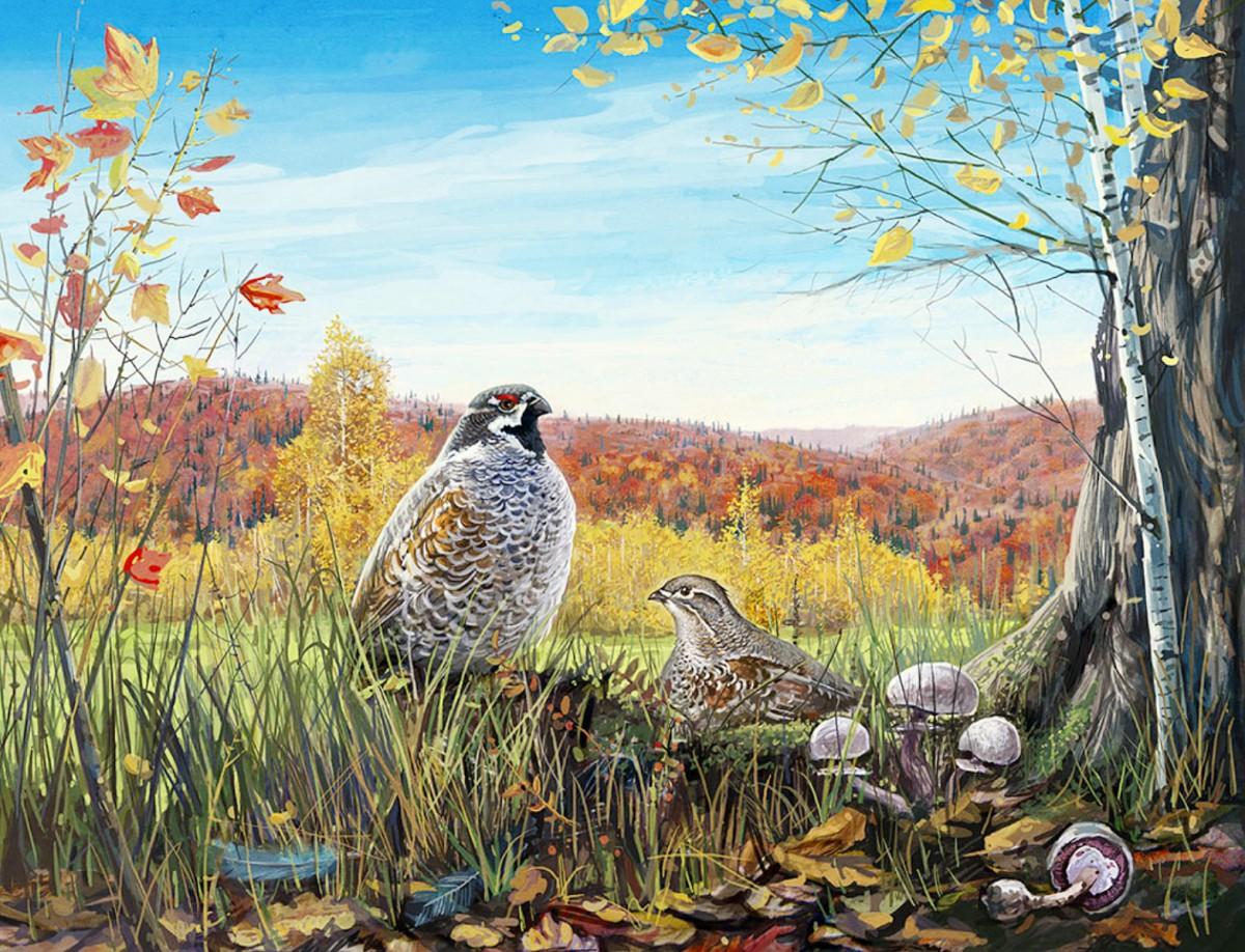 Пазл Собирать пазлы онлайн - Птицы в лесу