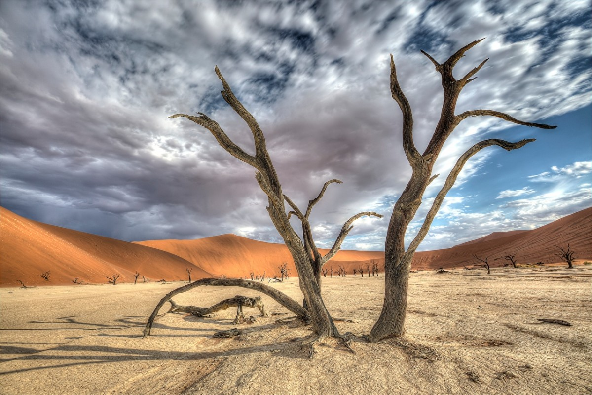Пазл Собирать пазлы онлайн - Пустыня Намиб