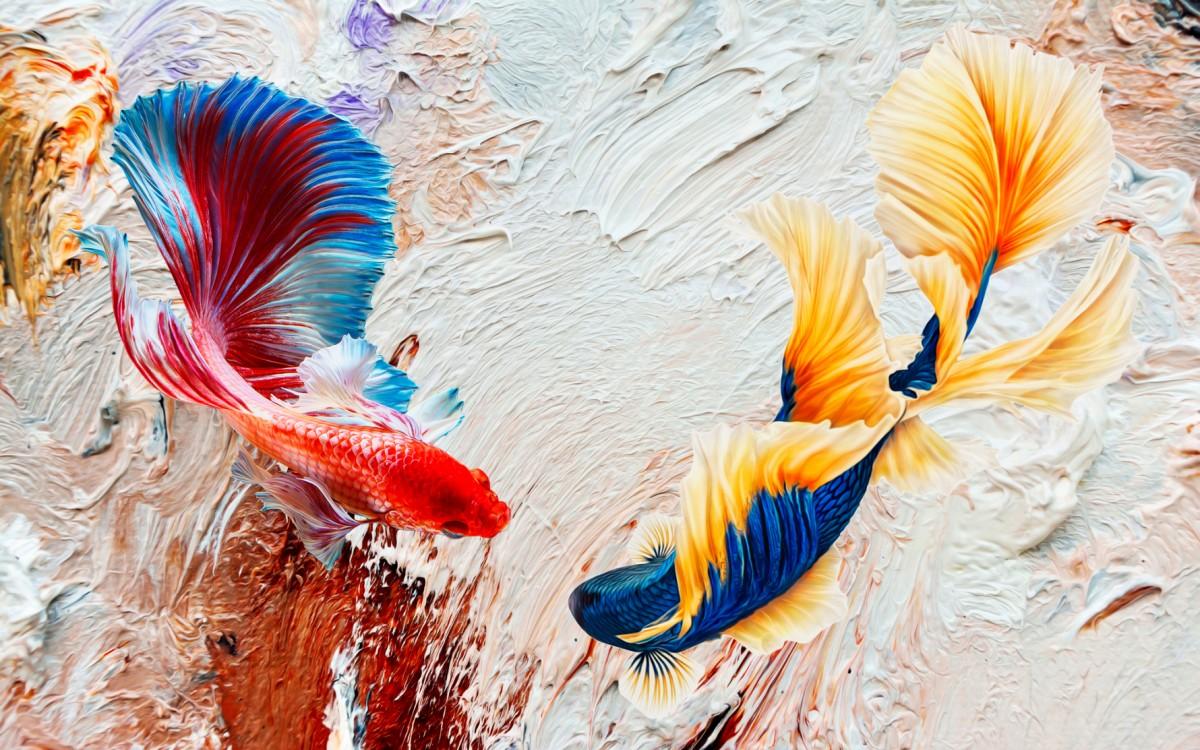 Пазл Собирать пазлы онлайн - Рыбки
