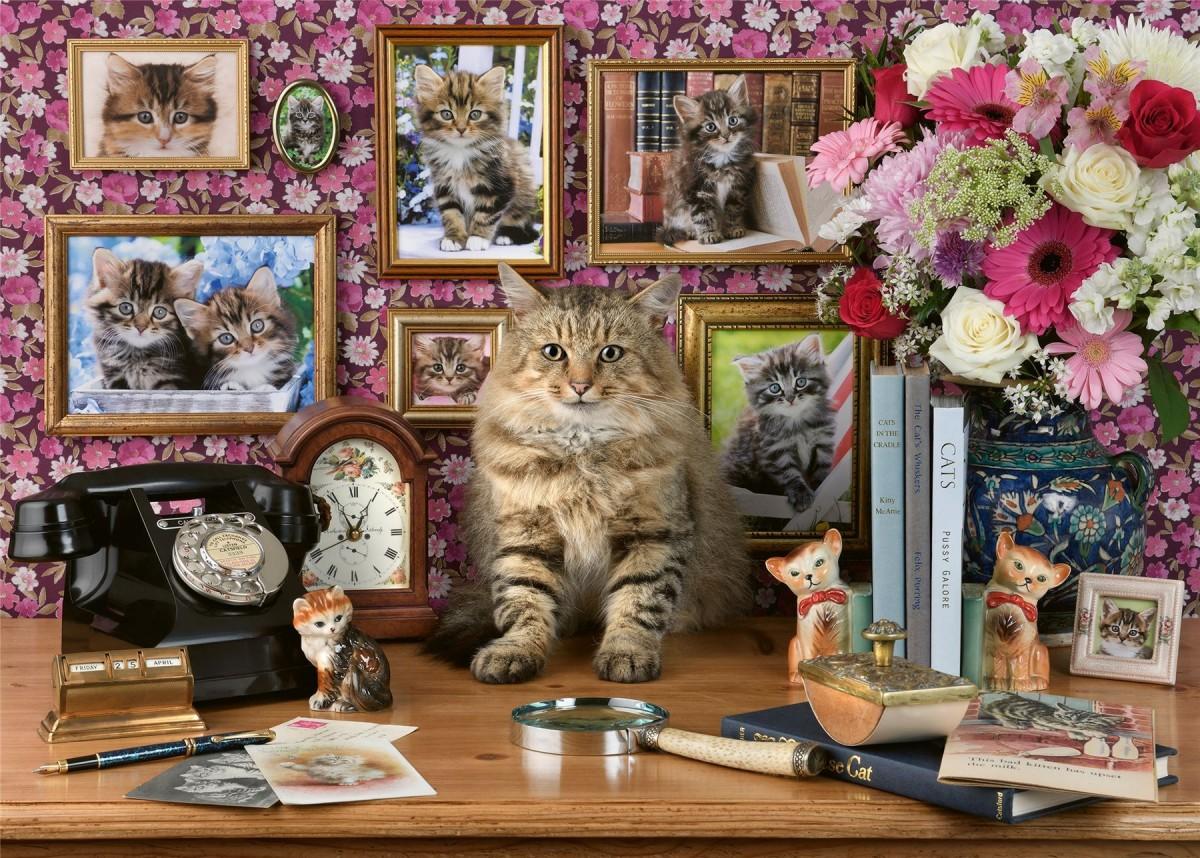 Пазл Собирать пазлы онлайн - Родственники кота