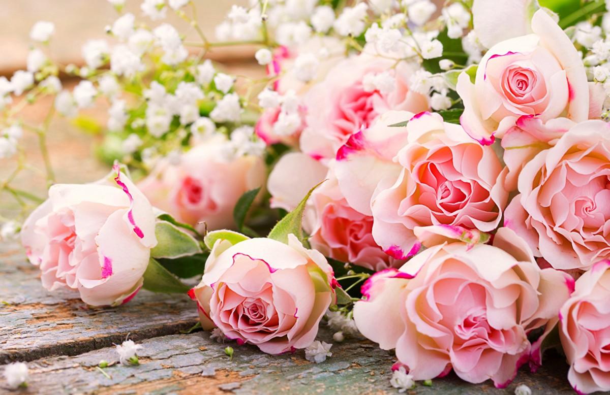 Пазл Собирать пазлы онлайн - Розы и гипсофила
