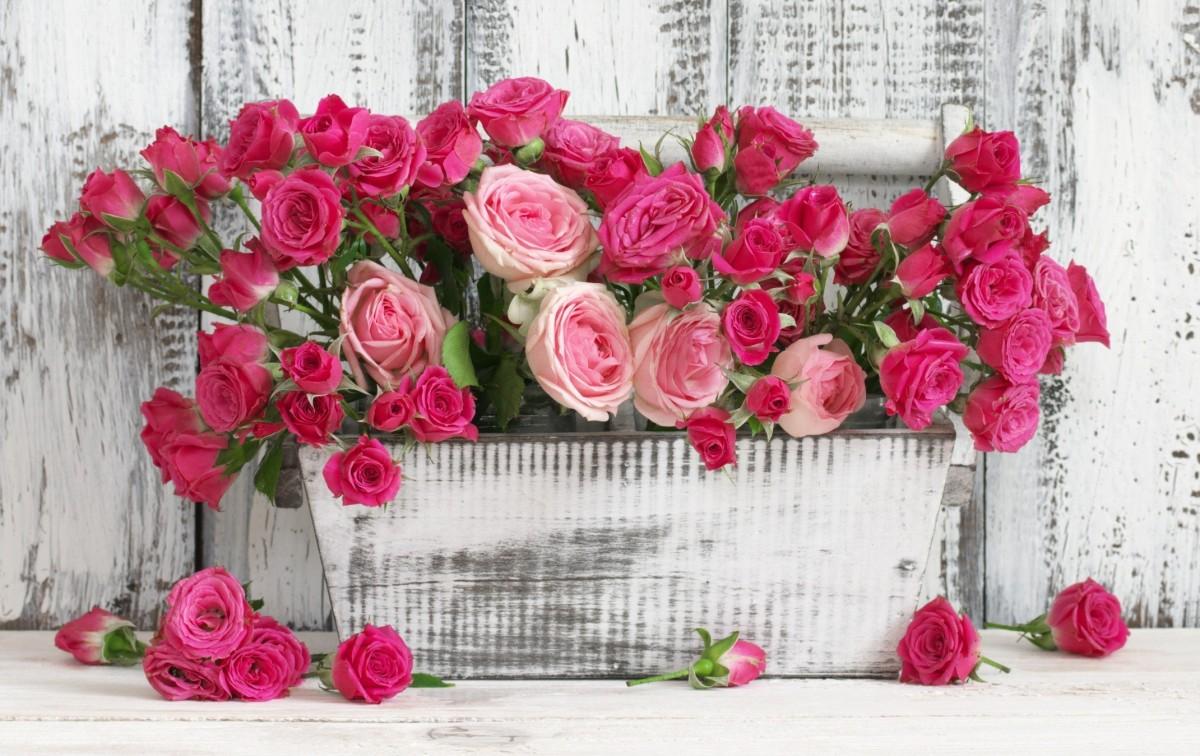 Пазл Собирать пазлы онлайн - Розы в ящике
