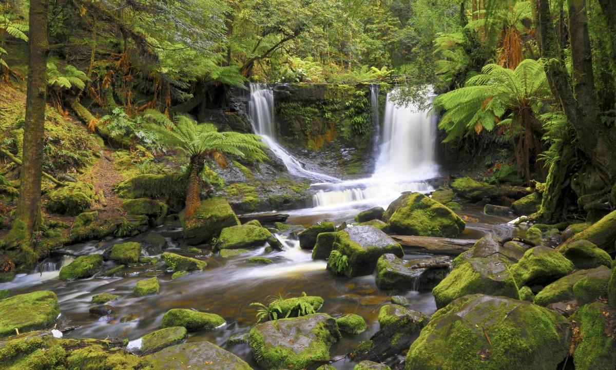 Пазл Собирать пазлы онлайн - Тасманийский водопад