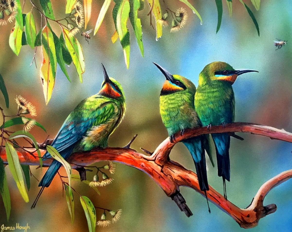 Пазл Собирать пазлы онлайн - Три птицы