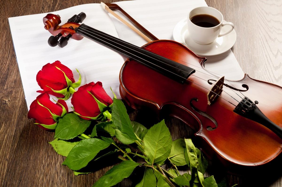 Пазл Собирать пазлы онлайн - Три розы и скрипка