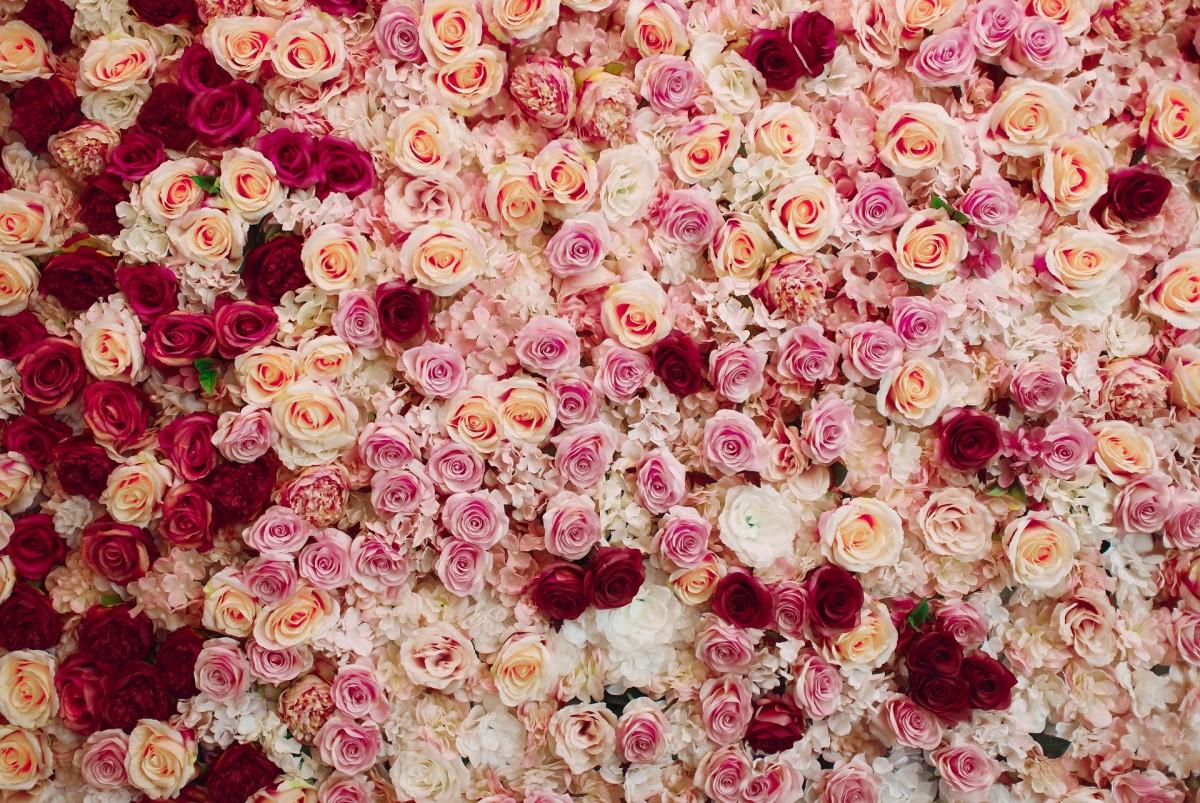 Пазл Собирать пазлы онлайн - Цветочный ковёр