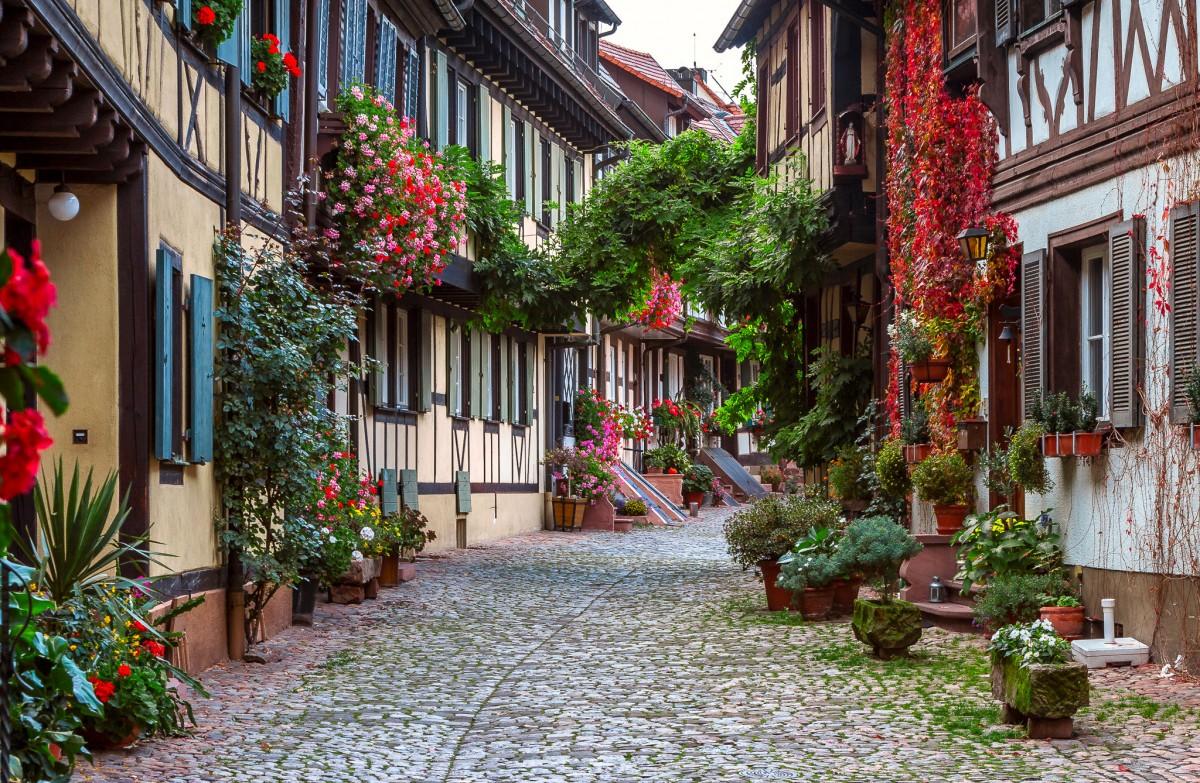 Пазл Собирать пазлы онлайн - Цветущая Германия