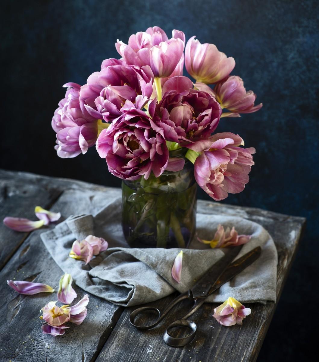 Пазл Собирать пазлы онлайн - Тюльпаны и ножницы