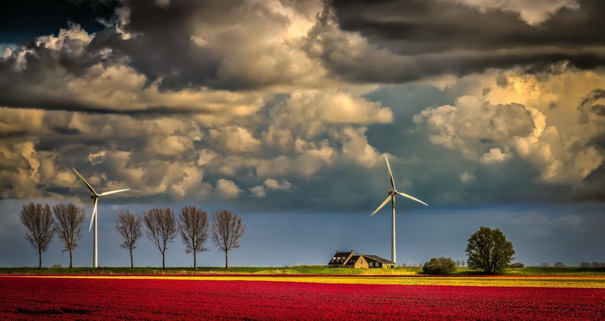 Пазл Собирать пазлы онлайн - Ветряки в поле