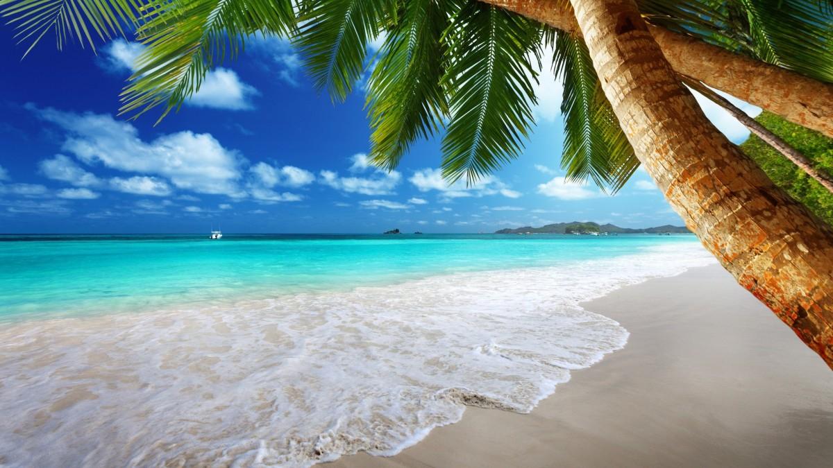 Пазл Собирать пазлы онлайн - Вид с берега моря