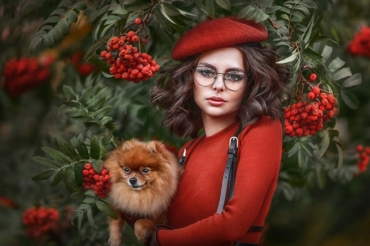 Пазл Собирать пазлы онлайн - Выгуливая собаку
