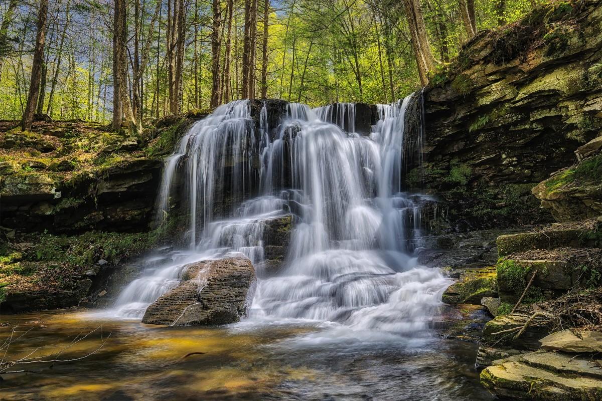 Пазл Собирать пазлы онлайн - Водопад в лесу