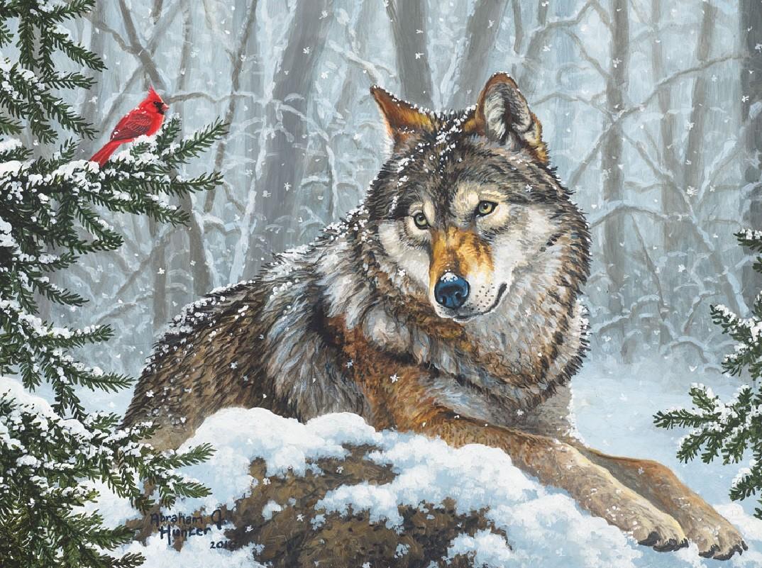 Пазл Собирать пазлы онлайн - Волк и кардинал